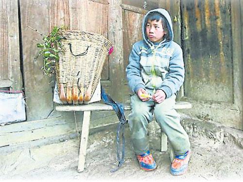 只有11歲的楊賢樂和妹妹與奶奶一起在木屋居住。《蘋果》