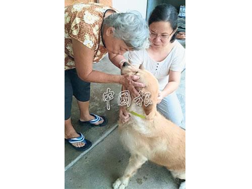 黄晓玲与母亲一同逗「毛小孩」为乐。
