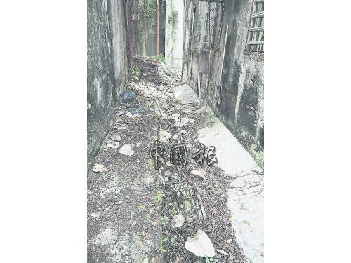 小巷的溝渠佈滿落葉及樹枝,影響排水的順暢。