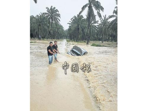 其中一輛轎車,被洪水推入稻田里。