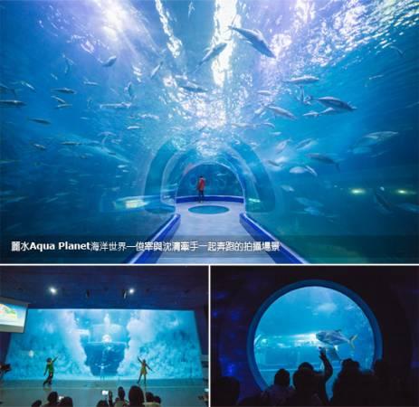 麗水Aqua Planet海洋世界,讓你看見海底美麗世界。