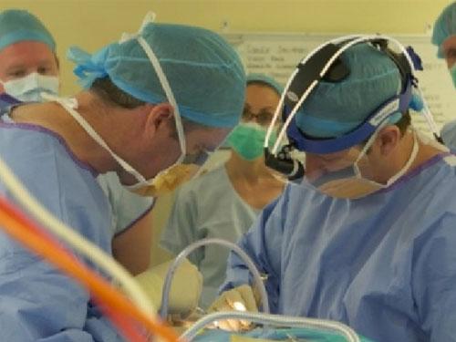 醫生團隊為安格斯施手術。(圖:互聯網)