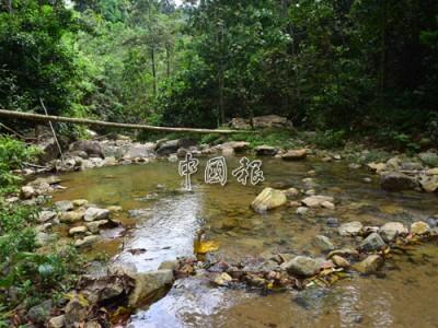 柔州衛生局宣布,即日起關閉埔萊山瀑布1區為期兩個星期。