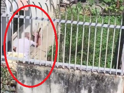 老翁以木棍狂毆狗只(紅圈)的畫面,遭附近居民攝下。