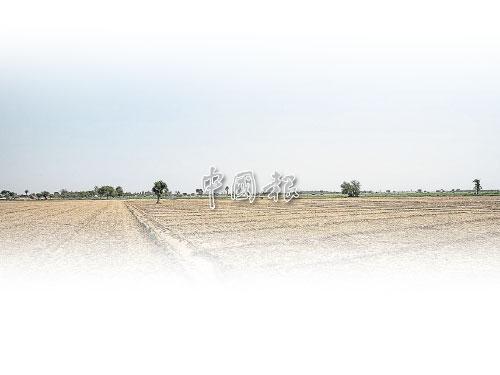 一大片農耕地在眼前豁然開展出來,遼闊中看到一絲蒼涼,只是點點綠意燃起了生命之光!