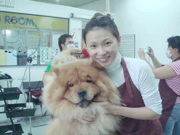 在踏入房地產銷售行業前,朱佩莉多次創業,包括開設寵物店。