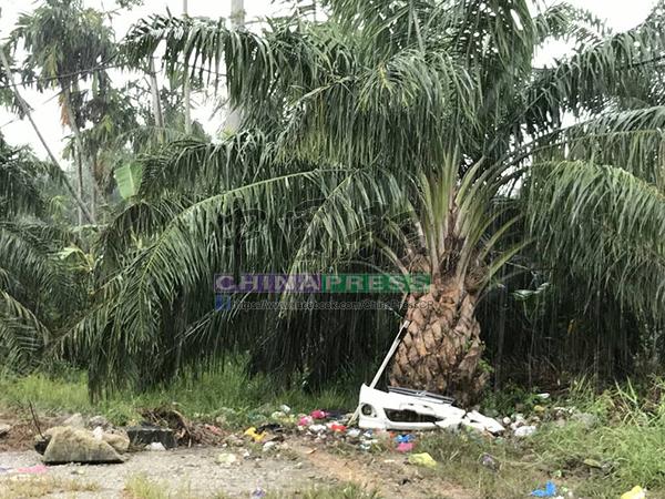 鄒婉依家屬發現,車禍現場附近油棕樹周圍出現數個靈異面孔。
