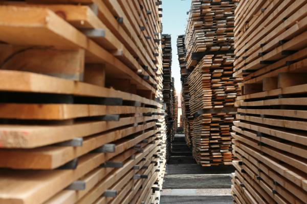 取材于100%實木加工成地板、牆腳線、牆板、天花板及室外地板等,深受國內外歡迎。