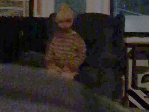 """""""親愛的大衛""""坐在亞當斯的沙發上。"""