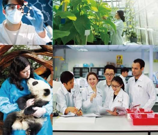 從生物科技、生物醫藥科學、食物營養學等,泰萊大學提供世界級一流的師資與設備,讓學生在科學領域上更上一層樓。