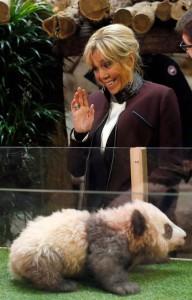 布麗奇特被小熊貓的咆嘯聲嚇到,露出尷尬笑容。(歐新社)