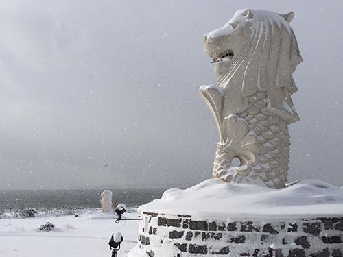 北海道函館的雪地裡出現魚尾獅雕像。(取自網絡)