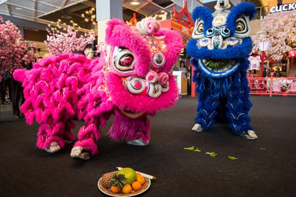 IPC購物中心帶來了一系列精彩活動,有傳統舞獅表演、財神爺送祝福、福祿壽獻福氣等,不容錯過!
