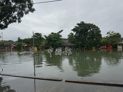斯里達邁住宅區一帶的草場變成水池。