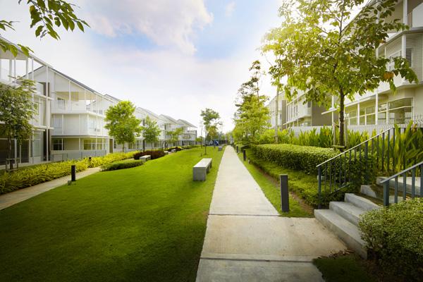 綠悠悠的草地與樹木,在陽光照耀下,猶如一幅動人的明信片。