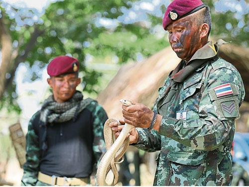 泰國武裝部隊一個小組隊長,在森林訓練中向士兵展示一條眼鏡蛇。(歐新社)
