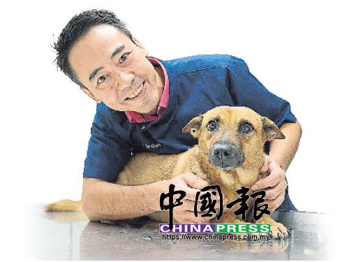 Dr Goh安撫因為相機快門聲感到緊張的小黃狗Ah Bi。
