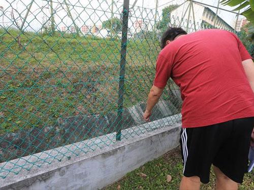 梁實軒收到通知書,指矮牆及籬笆侵佔土地0.13至0.49公尺。(《新明日報》)