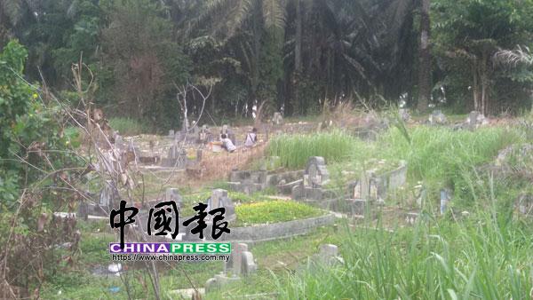 掃墓者發現祭品失蹤,沒料到疑是外勞偷竊。