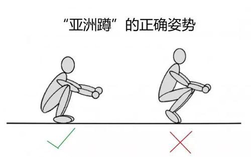 """根據網友說法,""""標準""""的亞洲蹲須腳掌完全著地。"""