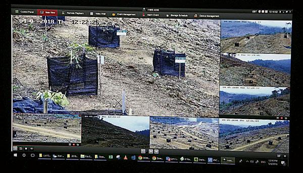 榴槤樹買家可通過CCTV,看到自己的榴槤樹成長狀況。