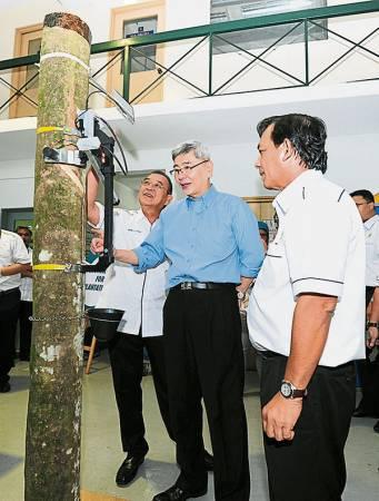 橡膠領域在未來可以依靠高科技提高產量與減少勞工需求。