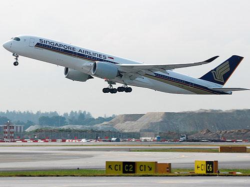 新航空中巴士A350-900,從樟宜機場起飛的檔案照。(路透社)