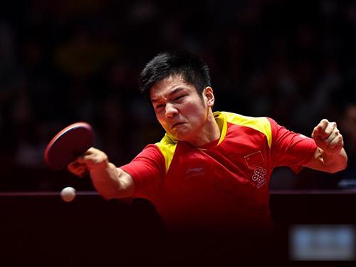 樊振東終結隊友林高遠的征途。