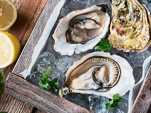 生蠔是許多海鮮愛好者的美食之一。