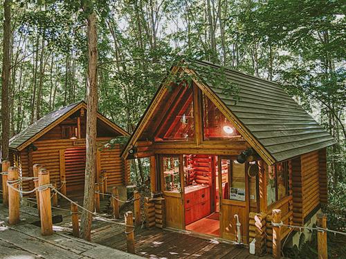 森林裡的精靈小木屋Ningle Terrace。