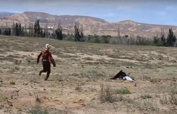 金鵰的馴獸師發現後,立刻上前要把女童拉開,但金鵰的鳥喙仍死死緊咬著女童不放。