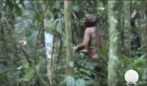 """""""洞穴之人""""2011年在森林時被拍到的畫面。(美聯社)"""