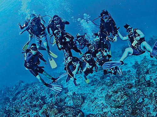 快樂的潛水是與潛伴們互相照應,與海洋生物和平共處。