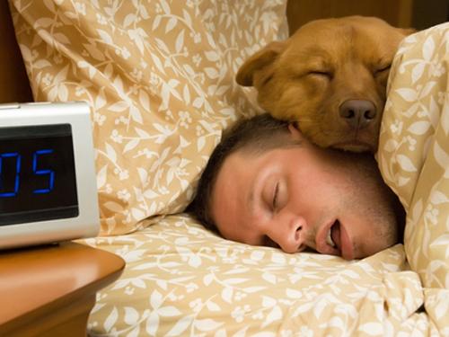 睡眠達11小時的人,早死風險比正常人高47%。
