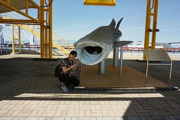 和鯊魚的合照是唯一一張我在這趟旅程中,其他游客幫我拍的照片。攝於大阪海游館的入口。