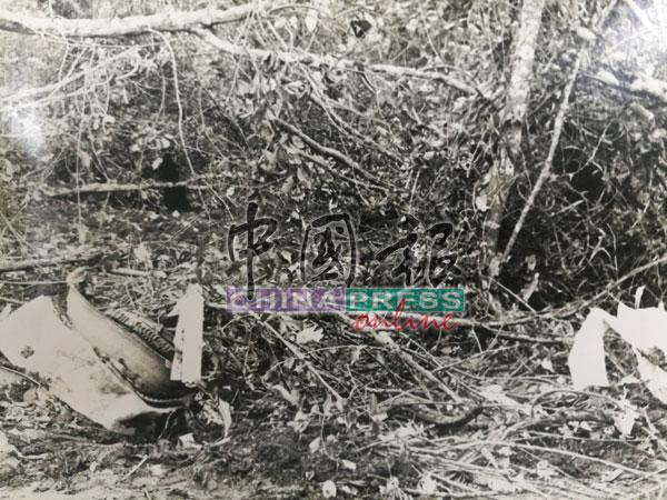 失事飞机在柔佛州振林山丹绒古邦坠毁,图为该机铲平数十棵树木后沉入沼泽之地。