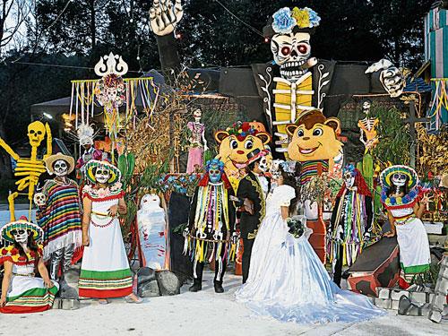 超值的配套讓你玩轉愛法摩沙度假村。
