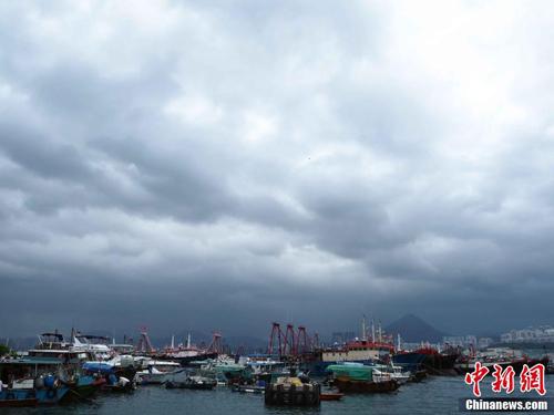 大批漁船停泊筲箕灣避風塘。(中新網)