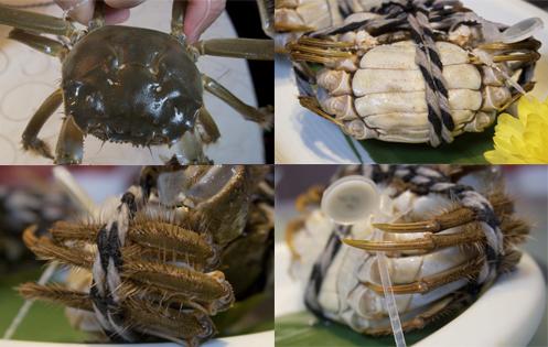 阳澄湖大闸蟹独生长环境,让蟹本身具有青背 (左上)、白肚(右上)、黄毛(左下)和金爪(右下)的4大特征。