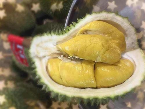 榴梿商King Fruits周二开始引进猫山王,并在面子书上载榴梿果肉照片。