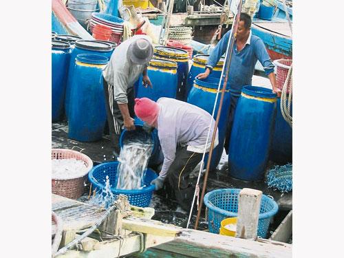 全球天气转变已难以预测,不但影响渔民生计,也无从控制和应对。(档案照)