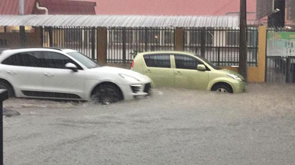 车辆涉水而过。