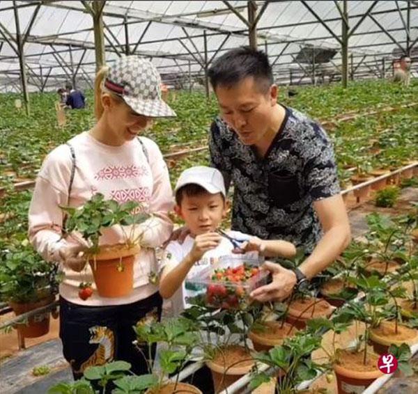 郑秀珍最后一次分享全家福是今年6月3日,当时她和丈夫带着儿子到金马仑游玩。