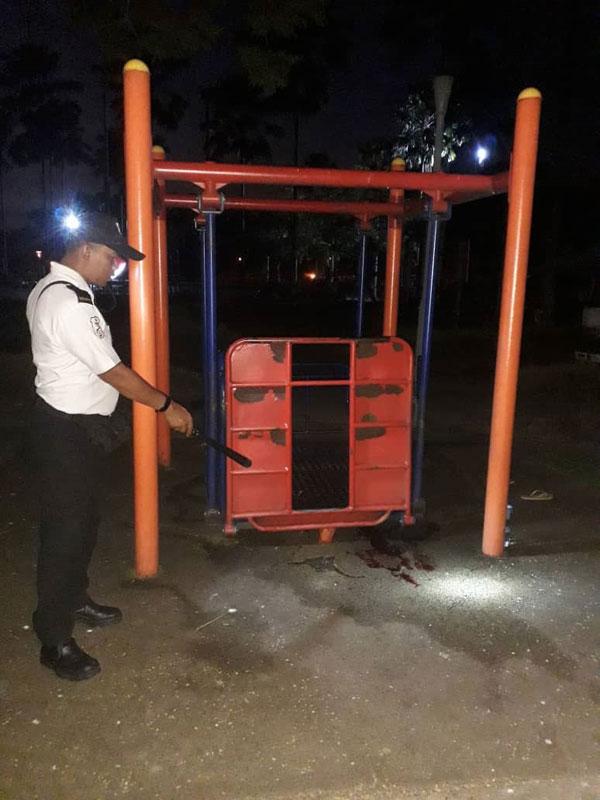 公园的保安员正指向该夺命秋千的位置。