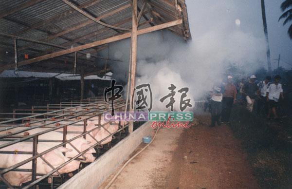 初步调查指因蚊子叮咬猪只转而叮咬人民而引发病症后,当局采取喷射蚊雾的措施。