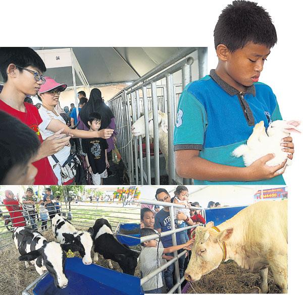 MAHA 2018的畜牧业展区备有各种家畜动物,让大人及小朋友近距离接触。