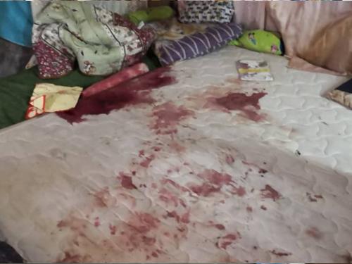 被毒虫杀害的两姐弟睡床上沾满血迹。