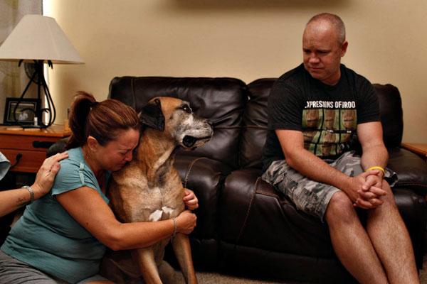 爱犬Mimosa的安乐死。前一张照片里,狗狗仍在凝视主人;下一张照片,安乐死已经完成,主人抚尸痛哭。