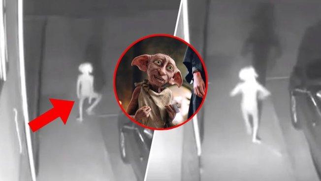 美国科罗拉多州科罗拉多泉市一位居民日前在面子书贴上一段自家监视器拍摄的影像,只见一个矮小的不明人形生物在夜色中手舞足蹈。