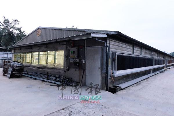 封闭式养猪场并不简单,不是建起四堵墙,再加个顶盖,把猪关起来养就成。